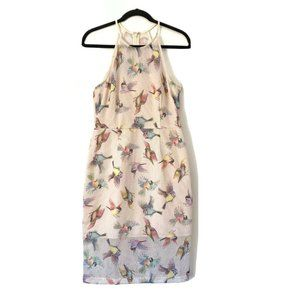 Anthropologie Hutch 4 Netted Ivory Bird Dress